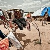 R2P and its Application to the Crisis in Mali