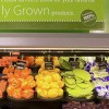 The Corporatization of Sustainability