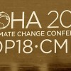 Options and Prospects for the BASIC at Doha, COP-18