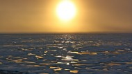 Arctic Indigenous Peoples, Climate Change Impacts, and Adaptation
