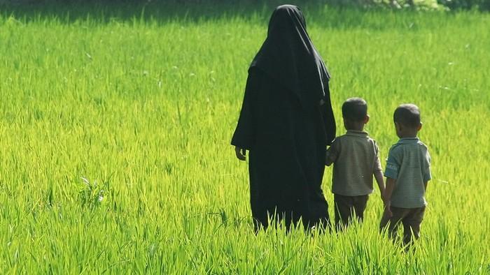 Accountability, Peace, Development and Democracy in Bangladesh