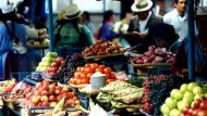 From the Local to the Global: The Politics of Food Systems