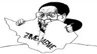 Mugabe: How Much Longer?