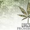 Marijuana Legalization: Panacea in the War on Drugs or Stoners Blowing Smoke?