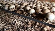 The 1994 Rwandan Genocide