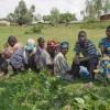 Rwanda's Mediation of Memorialization through Community-Based Sociotherapy
