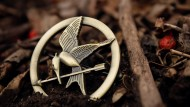 The Hunger Games and Human Security