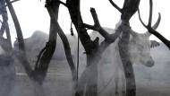 Emerging Ethnic Hatred in Jonglei State, South Sudan