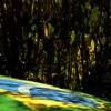 Brazil: Growing Pains of an Emerging Power
