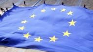 Euroscepticism: Virus or Cure?