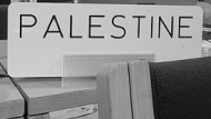 Palestine and the UN: The Recognition Debate