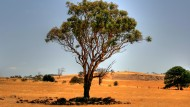 Climate Change and Australian National Security