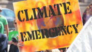 Transversal Environmental Policies