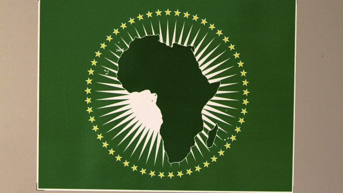 The Single African Passport – Curb the Enthusiasm, Challenges Abound