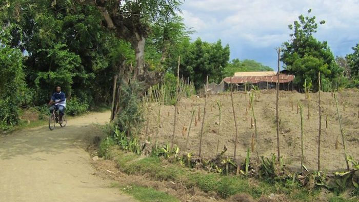 A Rationale for Pluralism: The Rural, Remote Peasant