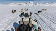 It was an unforgettable experience travelling with Mikaili and his dogs over the frozen sea ice of East Greenland.