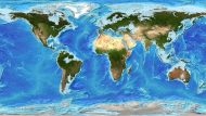 Assessing Global Response to Rising Sea Levels: Who Needs to Be Involved?