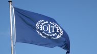 Student Feature – Spotlight on the International Labour Organization