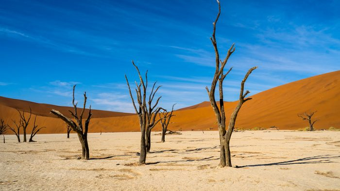 Community-Based Natural Resource Management and Global Climate Change in Namibia
