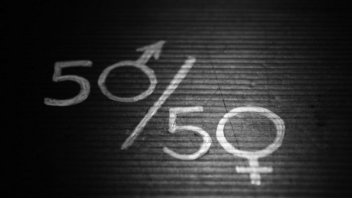 Gender Quotas: Towards an Improved Democracy