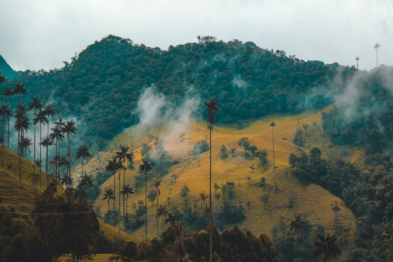 Climate Debt: A Model for Indigenous Latin American Self-determination?
